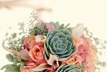 Nicoles someday wedding / by Amy Bursey