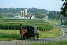 Amish / by Debbie Barrick
