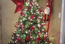 Christmas decorating  / by Beth Parrish