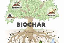 Biochar / by Joyce Lloyd