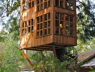tree houses / by Nora Lee