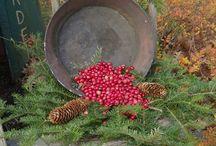 Christmas Decorating / by Rachel Thomas