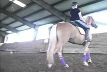 Riding, training, learning... / by Lisa L. Brewer