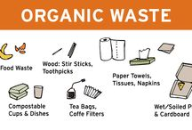 COMPOST - Organic Waste / by American University Zero Waste