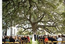 Beautiful Places / by Tandem Weddings