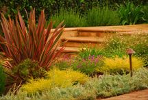 Tuscan Landscape Design / Inspiration and ideas for Tuscan- or Mediterranean-style landscape design. Go to http://www.landscapingnetwork.com/garden-styles/Tuscan-Landscape-Design.pdf for a printable, hi-res inspiration guide to this style. / by Landscaping Network