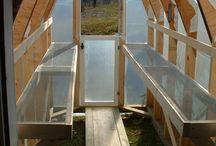 DIY Greenhouses & Potting Sheds / by Em Hale