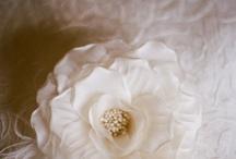 pretty! / by Kelly MacDonald