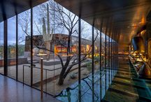 Interiors / by Richard Niu
