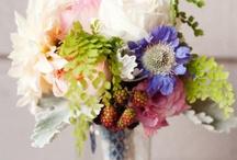 flowers / flowers / by Heidi M.