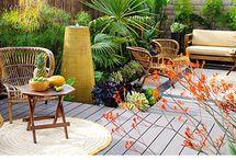 Garden & Landscape Ideas / by Michelle Lamar