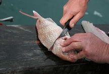 Fishing / by Tina Moye