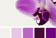 Color Palettes / Every event starts with a color palette. / by Taylor Made Soirées