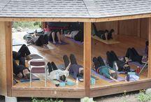 Yoga / by Shambhala Mountain Center