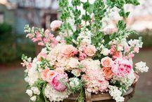 Flower arrangements / by Louise Pearce
