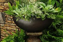 garden containers / by Vision Boards