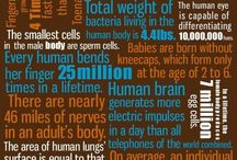 amazing facts about human body / by Melissa Willis