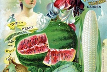 botanical art / by Kathy Patton