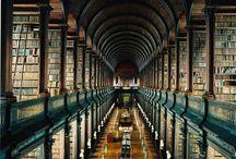 Nerdville / Books, Harry Potter, Hunger Games, and more! / by Jeanine Kunshek