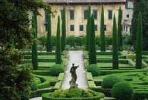 Green Wedding Inspirations / by MyItalian Wedding
