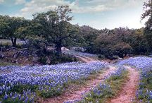 Fredericksburg / by Susan Korbel