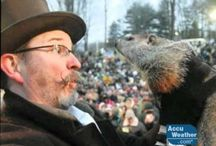 Groundhog Day! / by Meagan Waters
