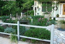 Backyard mark over  / by Veronica Rohweder