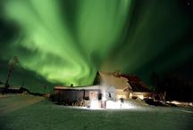 northern lights / by Catherine Kryger