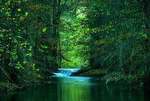 Lakes ~ Rivers ~ Streams  / by Cassie Koegl