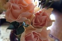 Flowers / by Marilyn Bellamy