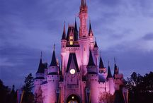 NASP 2015 Annual Convention - Lake Buena Vista, FL / The scoop on attractions located in Lake Buena Vista, FL.  / by NASP