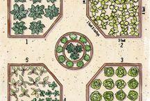 Gardening / Indoor & outdoor gardening / by Nathalie-Claire Lima