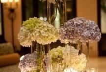 Wedding center piece / by Thai Binh Vu