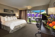 Our hotel / Pictures of the Best Western Plus Boulder Inn / by BEST WESTERN PLUS Boulder Inn