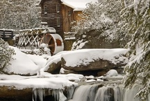 My Winter / by Colleen Hill-Rakunas