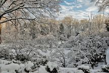 Winter Landscape at The Arboretum / by Reeves-Reed Arboretum