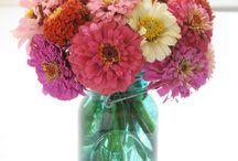 Flowers / by Liz Levesque