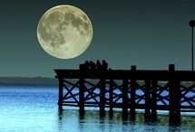 moonbeams / by Chris Holst