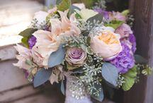Stephanie / by Dandie Andie Floral Designs