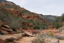 Arizona State Park Adventures / There are a number of State Parks in the Sedona area...Red Rock State Park, Slide Rock State Park, and more. There's hiking, swimming, star gazing, ranger programs, guided tours and more for visitors to do on their trip to Sedona! / by El Portal Sedona Hotel