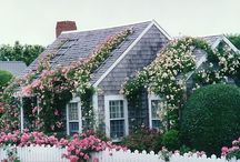 Cute Cottages / by Christine Baker