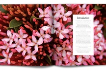 Publication Design / by Rudi Petry