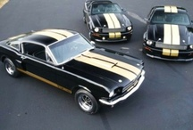 Muscle Cars & Exotics / Cars, Cars, cars... / by Daniel Gregg
