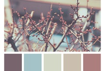 color palettes / by Eugenia K.