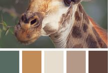 Neutral Palettes / by Katherine Hall