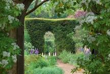 my secret garden / by NoahNicole Hammer
