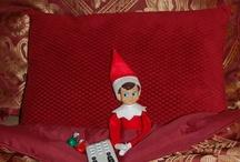 Elf on Shelf / by Julie Blackburn