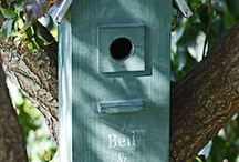 Bird Houses, Baths and Feeders / by INCOGNITO ..