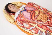 Anatomy & Design / by Patricia Niemann