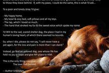 Pets love you unconditionally / by Jennifer Garlie